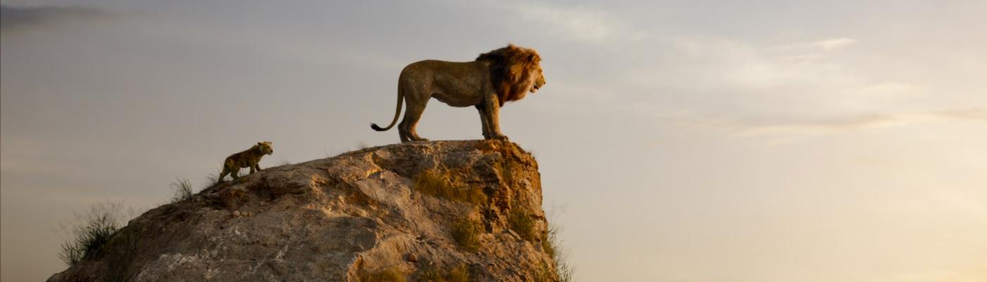 aslan-kral-slider